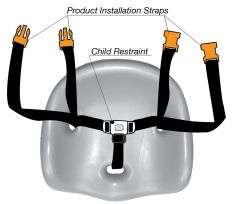 Cafe Booster Replacement 3 Point Harness