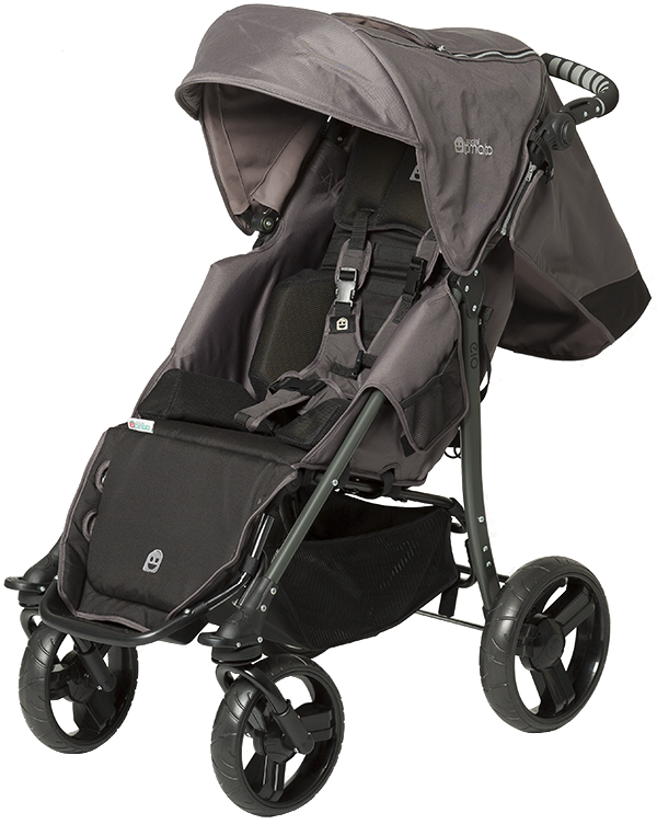 Understanding The Special Tomato EIO Stroller